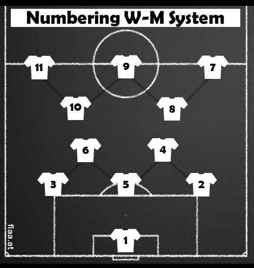 WM_System